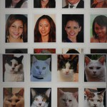 Facial Recognition Software and Cats